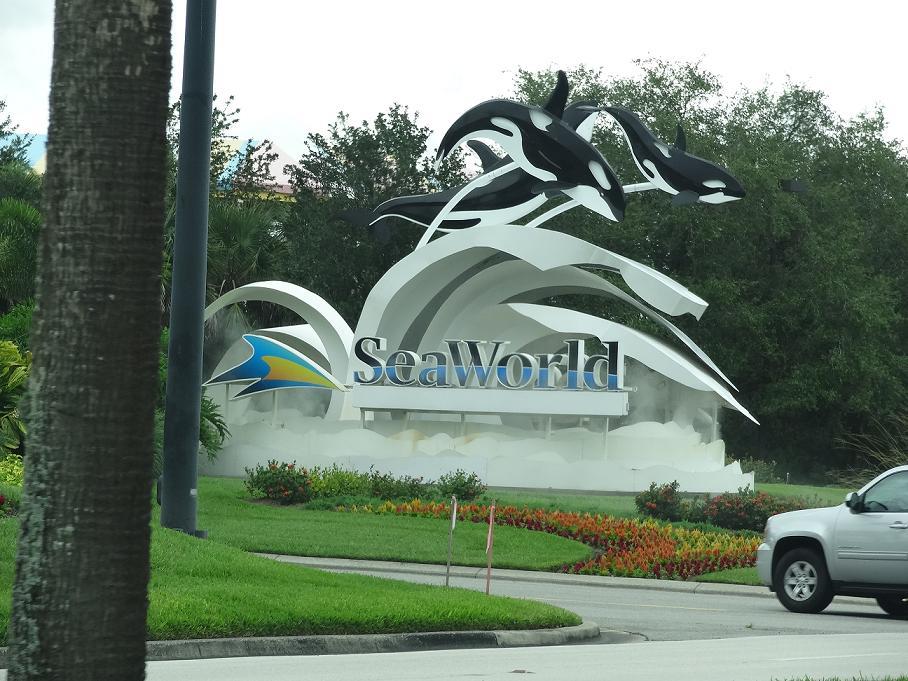 sea wordl1